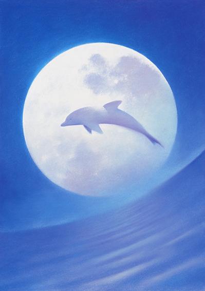 明るい月の夜